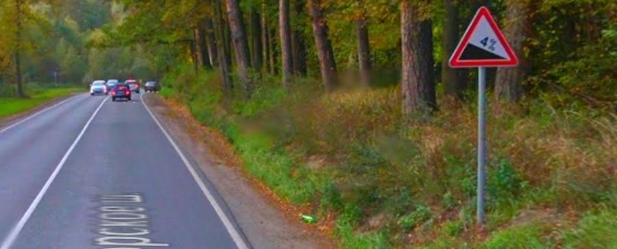 Знак дорожный 1.13 крутой спуск на фото. Описание